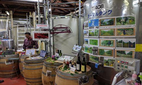 山梨のワイン造り ブドウ栽培の今!#10